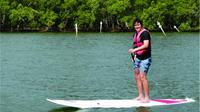 Brunswick Heads Eco Kayak Cruise and Stand-Up Paddleboarding