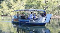Brunswick Heads Sunset Eco Rainforest River Cruise
