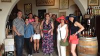 Full-Day Small-Group Provence Wine Tour from Nice