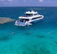 Outer Great Barrier Reef Dive and Snorkel Cruise from Palm Cove