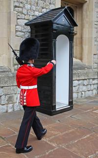 London Full-Day Sightseeing Tour