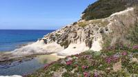 The Granite Island - Elba