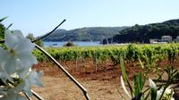 The Wine Island - Elba