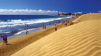 Maspalomas Coast and Dolphin Watching Tour