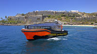 Whale and Dolphin Watching Tour in Gran Canaria