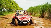 Bayahibe Racing Buggy