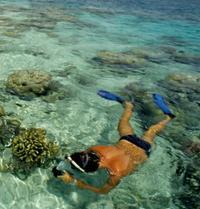 Punta Cana Snorkel and Caribbean Dance Cruise