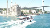 Bosphorus Cruise With Dolmabahe Palace and Fortreses