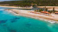 Duas Barras Beach And Marape Dunes Trip  From Maceió