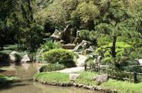 Rio de Janeiro Botanical Garden Tour*