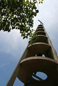 Rio de Janeiro Half-Day Walking Tour