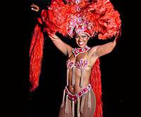 Rio de Janeiro Shore Excursion: Plataforma Samba Show