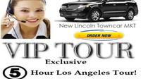 Private Half-Day Los Angeles Sightseeing Tour