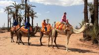 Sunset Camel Ride Tour in Marrakech Palms Grove Area