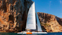 A Day at Sea with BBQ on board and Dinner in Altea