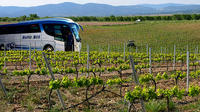 Valencia Wine Tour with Tasting and Lunch for Groups