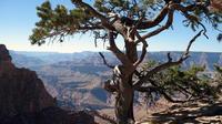 Grand Canyon Hike with Sedona and Flagstaff Hotel Pickup