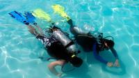 PADI Discover Scuba Diving Program in Punta Cana