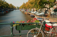 Make use of Amsterdam's extensive Canal Bus system to explore the vibrant city