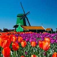 Amsterdam Super Saver 3: Recorrido por la ciudad y excursión de un día a los molinos de viento de Zaanse Schans, Volendam y Marken