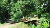 Horseback Riding Tour from Manuel Antonio