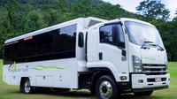Daintree and Cape Tribulation Tour from Cairns