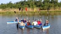 Delta Wildlife Kayak Tour