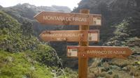 Gran Canaria Valley of Azuaje Guided Trek