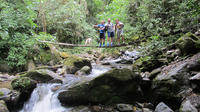 2-Day Biking and Hiking Tour in the Coffee Region from Pereira