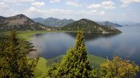 Day tour to Skadar Lake from Kotor Port Private Car Transfers
