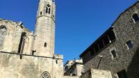 Picasso Museum and Gothic Quarter small group Tour
