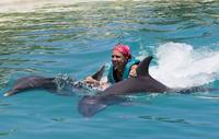 Punta Cana Dolphin Swim Experience