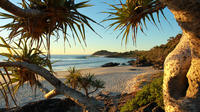 Overnight Tweed Coast Camping and Surfing Getaway from Brisbane, Gold Coast, or Byron Bay