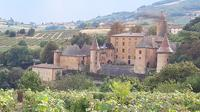 Beaujolais Gourmet Wine Tour with Tastings from Lyon