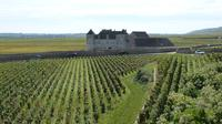 Private Day Trip to Beaune and Burgundy Vineyards from Lyon