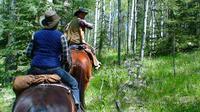 Horseback Riding in Ashcroft