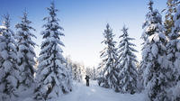 Quebec Nordic Backcountry Skiing Tour