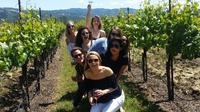 San Francisco to Wine Country Small Group Tour