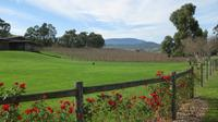 Yarra Valley and Wineries Trike Day Tour for Two from Melbourne