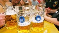 Guided Oktoberfest Tour and Evening at the Hofbrau Tent Including Beer and Oktoberfest Museum Tour