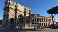 VIP Private Rome Tour (5hrs), Driver & Tour Guide including Colosseum with Skip the Line tkts