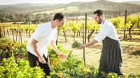 De Bortoli Yarra Valley Estate Gourmet Food and Wine Tasting Experience Including 3-Course Lunch