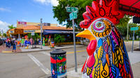 Miami City and Boat Tour with a FREE Bicycle Rental in South Beach