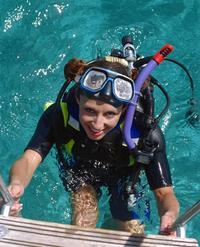 Nassau Shark Diving