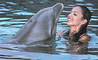 Nuevo Vallarta Signature Dolphin Swim