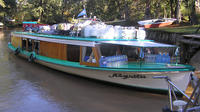 Shore Excursion: Private Day Tour to Tigre and Parana Delta from Buenos Aires