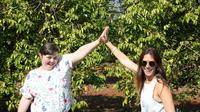 Ohana Winery Exotic Fruit Orchard and Wine-Tasting Tour