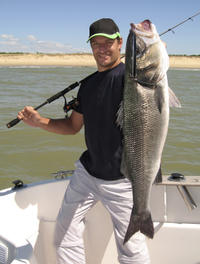 Reef and Wreck or Offshore Fishing Charter