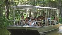 Private Tour of the Honey Island Swamp with Round-Trip Transfer from New Orleans