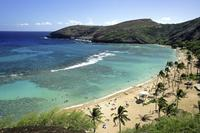 Hanauma Bay Snorkeling Adventure Half-Day Tour